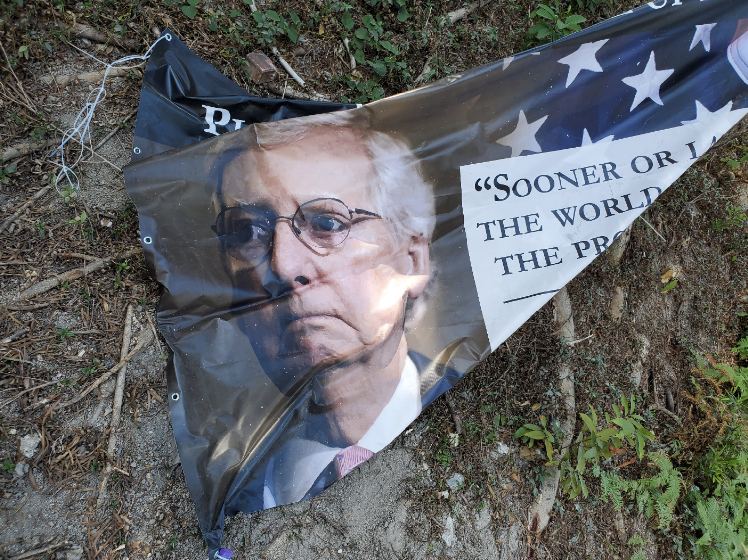 Part of a banner that shows a picture of Mitch McConnell and part of a quote from the Wall Street Journal.