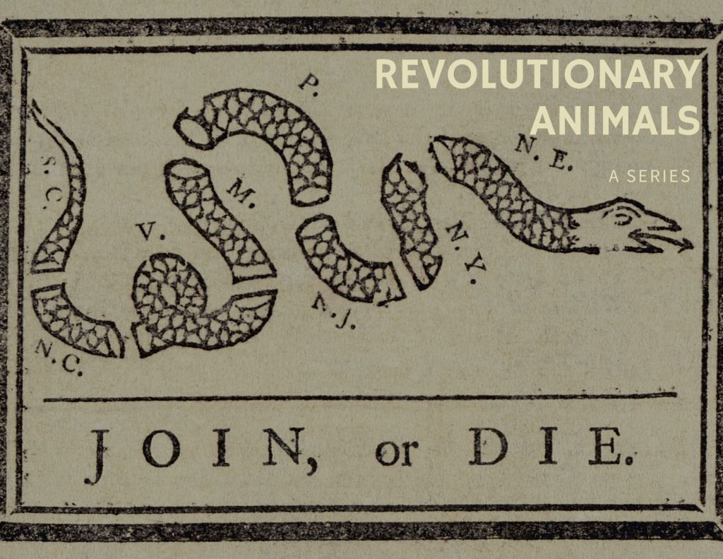 "Poster for upcoming series ""Revolutionary Animals."""
